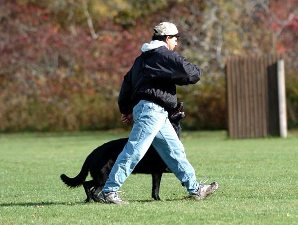 SchutzhundII 08