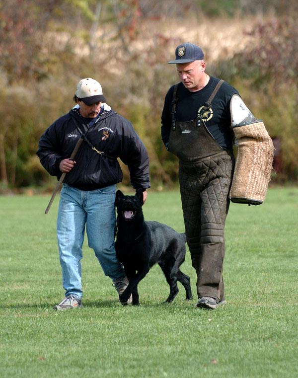 SchutzhundII 20
