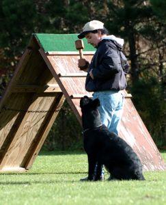 SchutzhundII 09